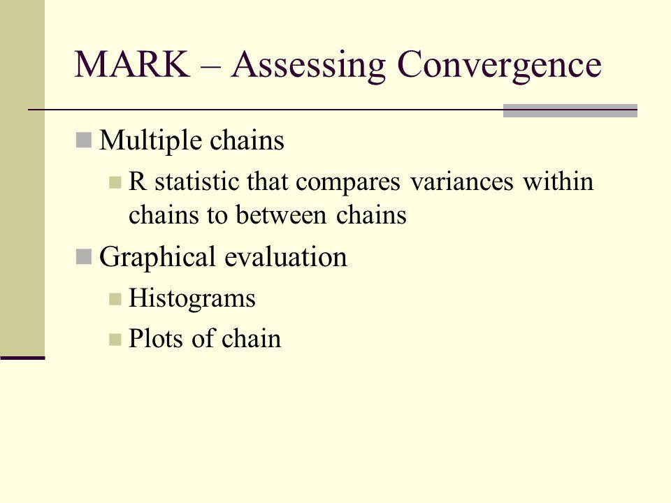 MARK – Assessing Convergence