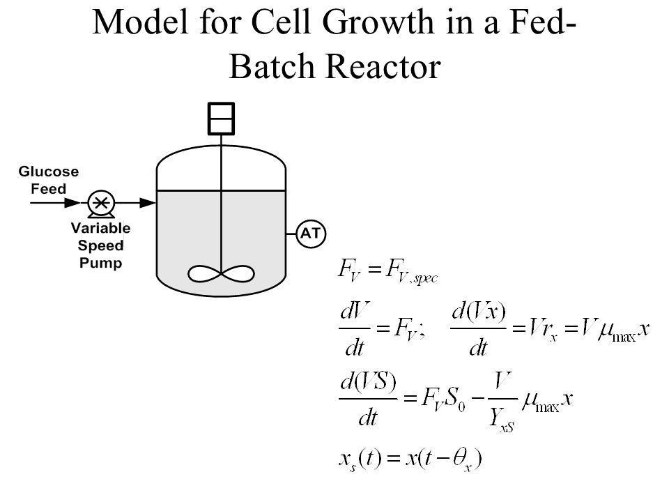 Model for Cell Growth in a Fed-Batch Reactor