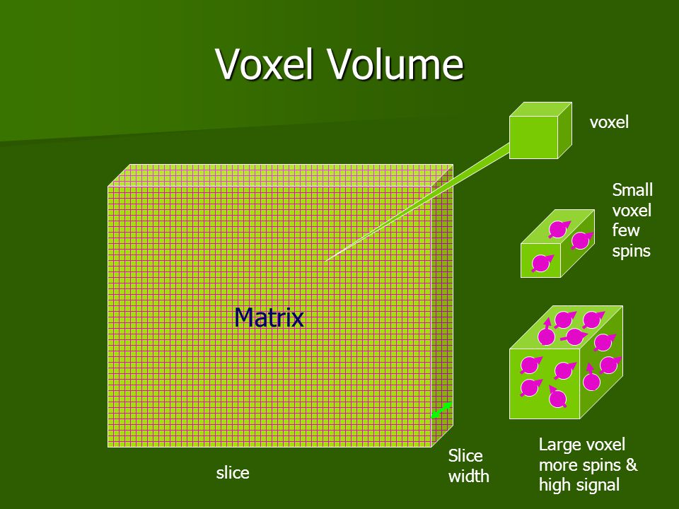 Voxel Volume Matrix voxel Small voxel few spins