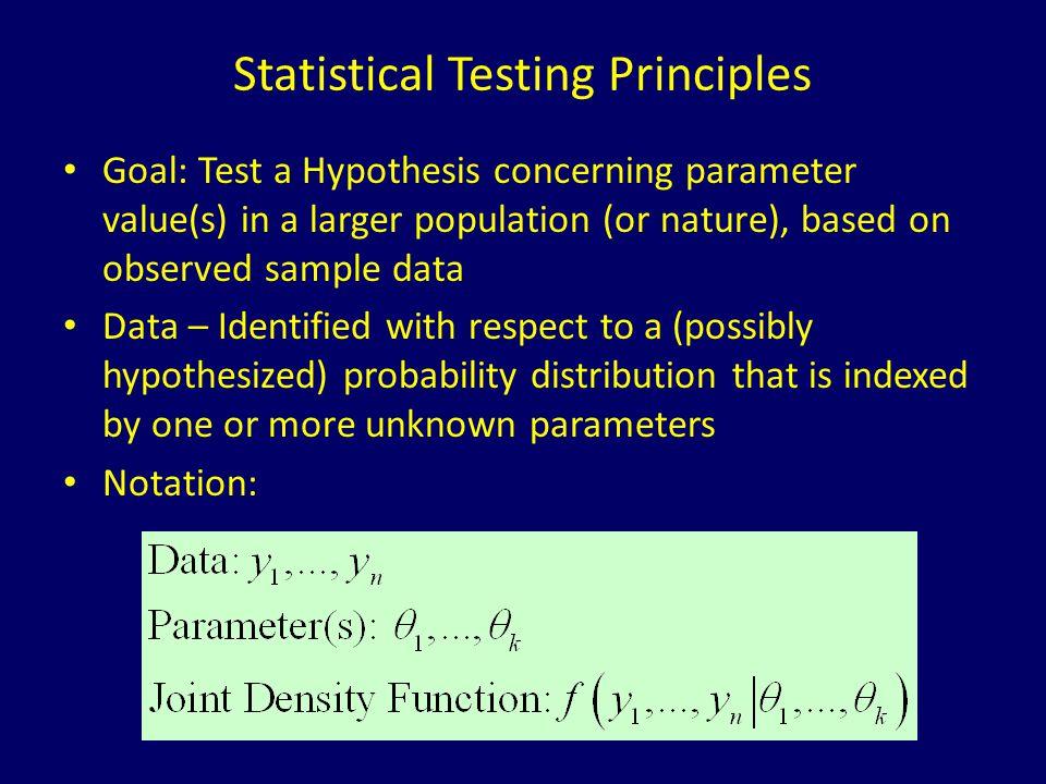 Statistical Testing Principles