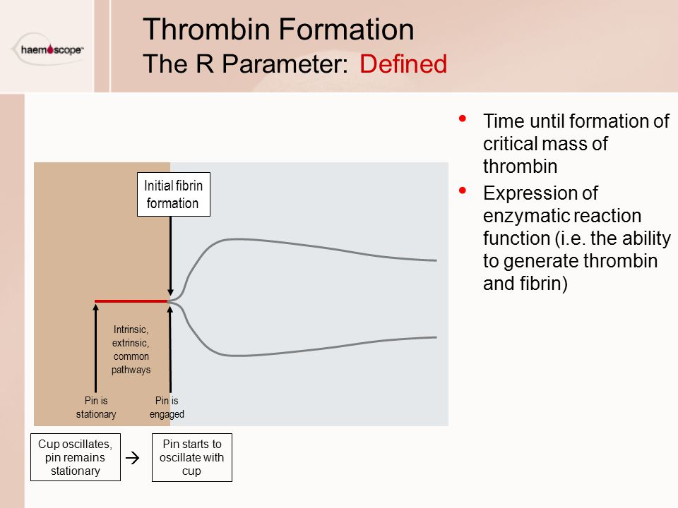 Thrombin Formation The R Parameter: Defined