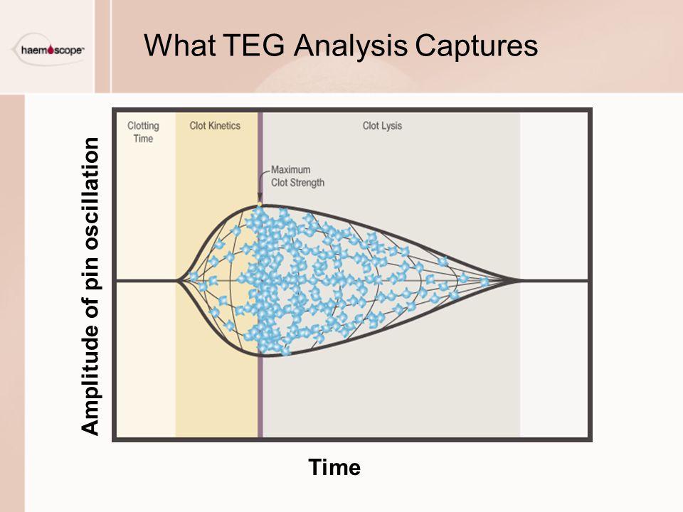 What TEG Analysis Captures