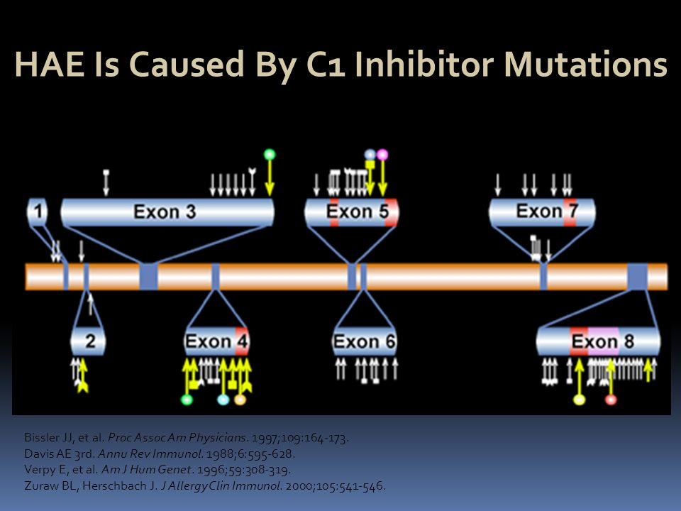 HAE Is Caused By C1 Inhibitor Mutations