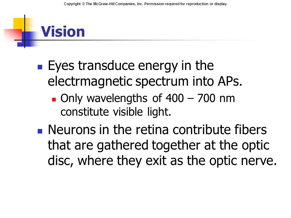 Vision Eyes transduce energy in the electrmagnetic spectrum into APs.