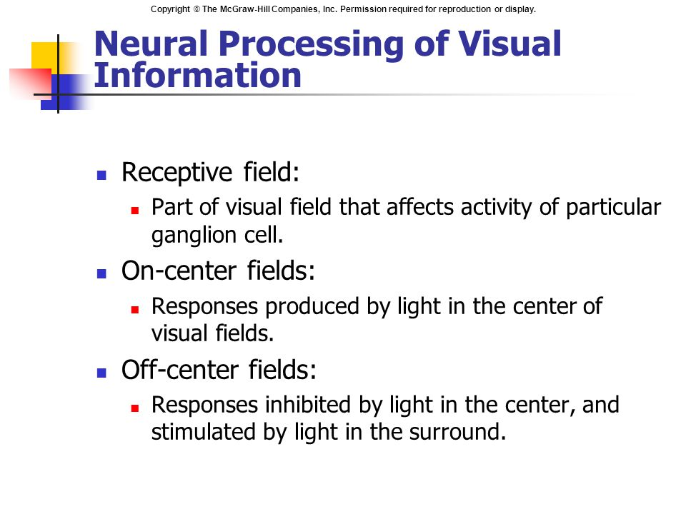 Neural Processing of Visual Information