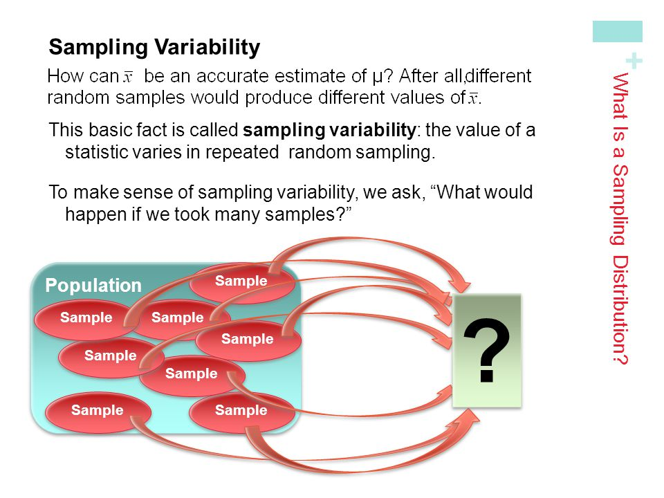 What Is a Sampling Distribution