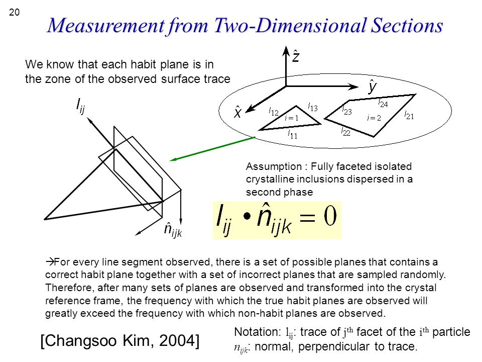 Measurement from Two-Dimensional Sections
