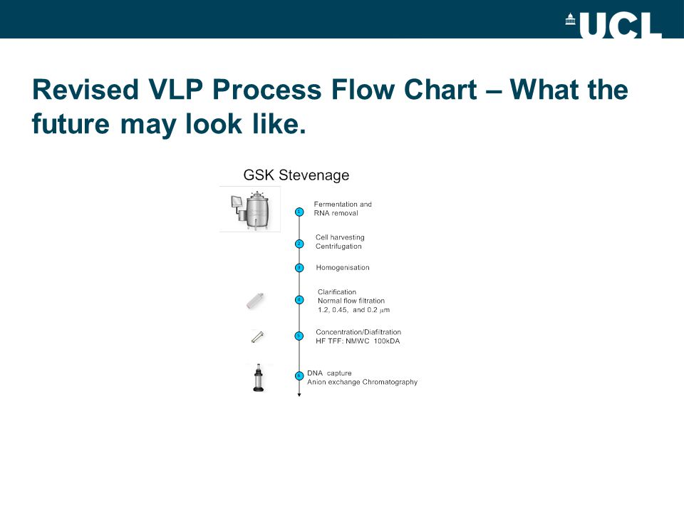 Revised VLP Process Flow Chart – What the future may look like.