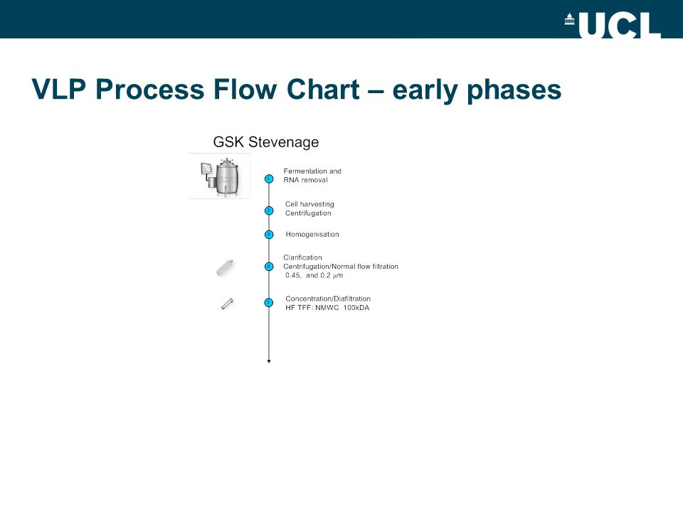 VLP Process Flow Chart – early phases