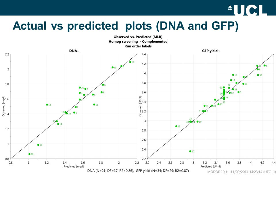 Actual vs predicted plots (DNA and GFP)