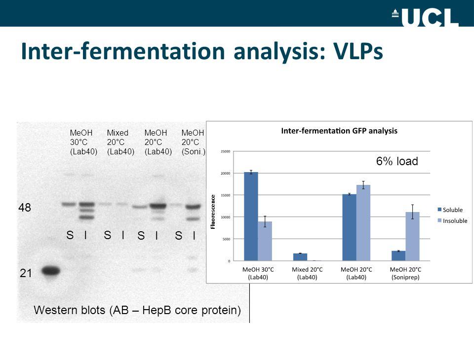 Inter-fermentation analysis: VLPs