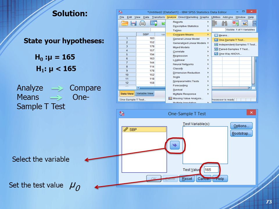 Analyze Compare Means One-Sample T Test