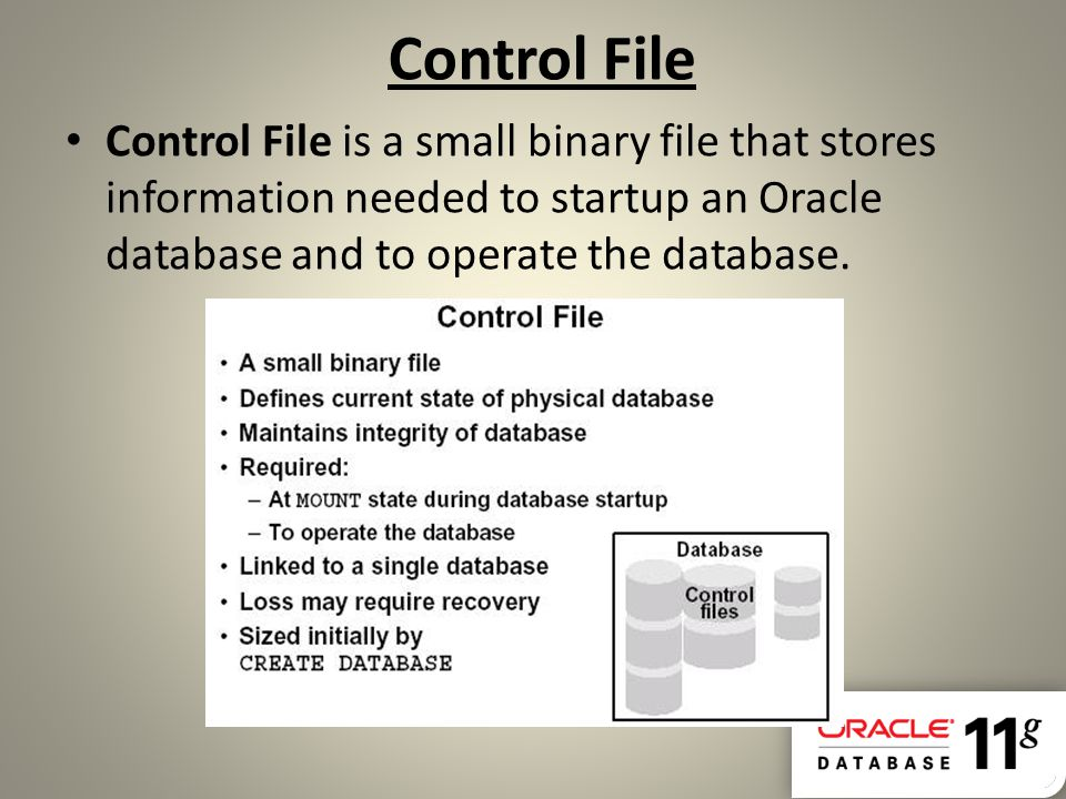 Control File Control File is a small binary file that stores information needed to startup an Oracle database and to operate the database.