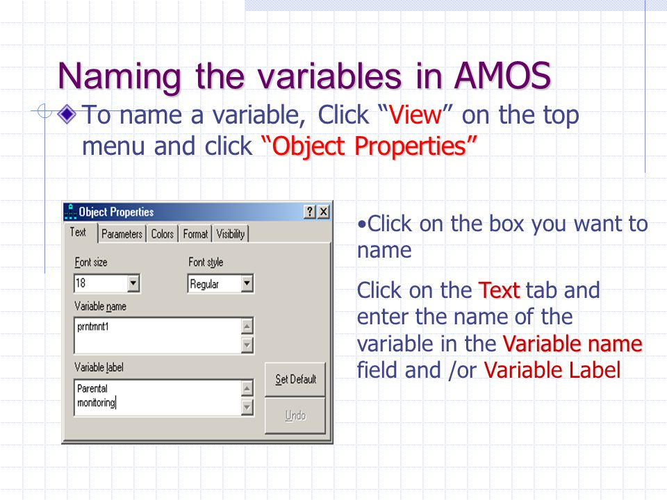 Naming the variables in AMOS