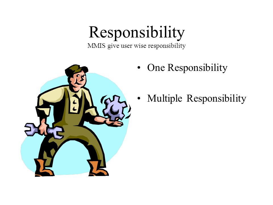 Responsibility MMIS give user wise responsibility