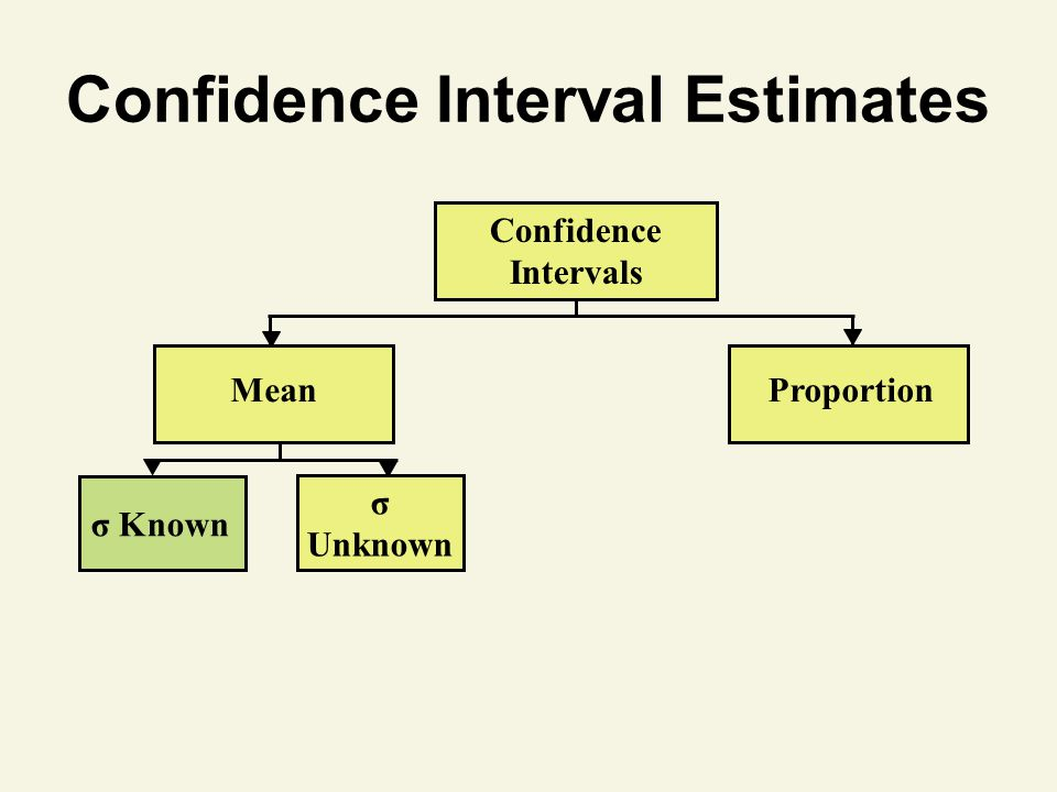 Confidence Interval Estimates