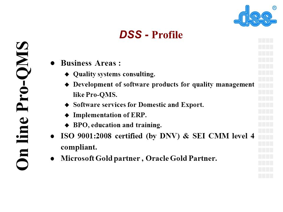 DSS - Profile Business Areas :