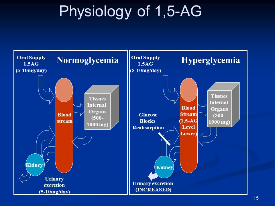 Physiology of 1,5-AG Normoglycemia Hyperglycemia Oral Supply 1,5AG