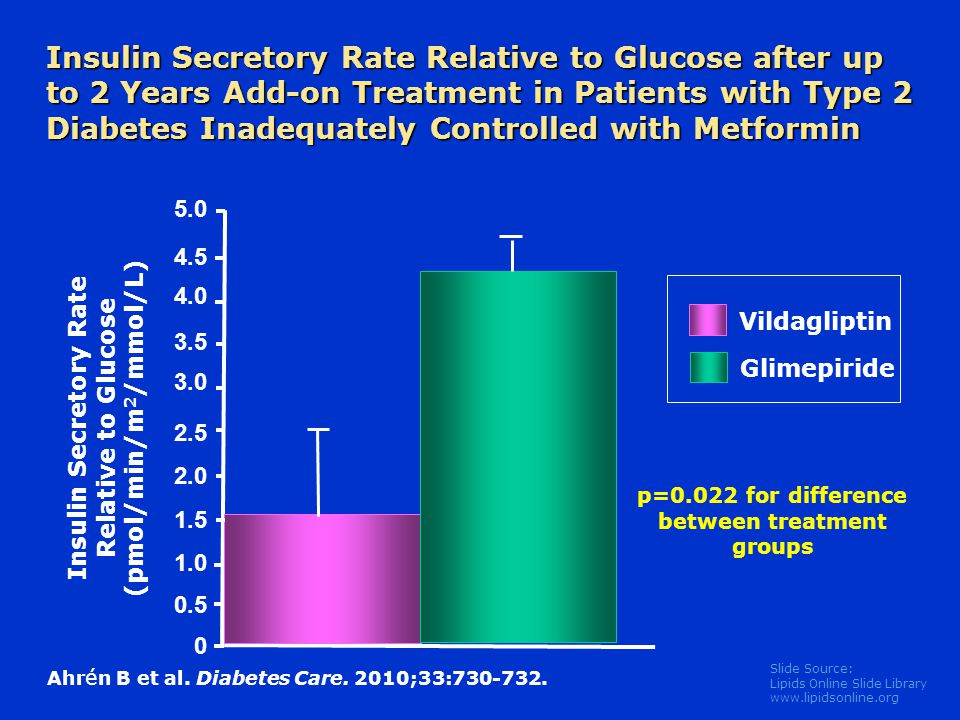 Insulin Secretory Rate Relative to Glucose after up to 2 Years Add-on Treatment in Patients with Type 2 Diabetes Inadequately Controlled with Metformin