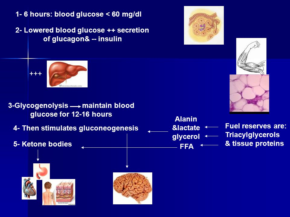 1- 6 hours: blood glucose < 60 mg/dl