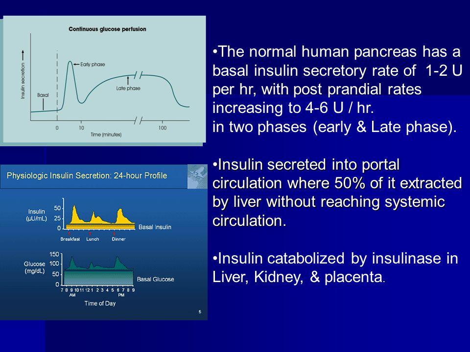 The normal human pancreas has a basal insulin secretory rate of 1-2 U per hr, with post prandial rates increasing to 4-6 U / hr.