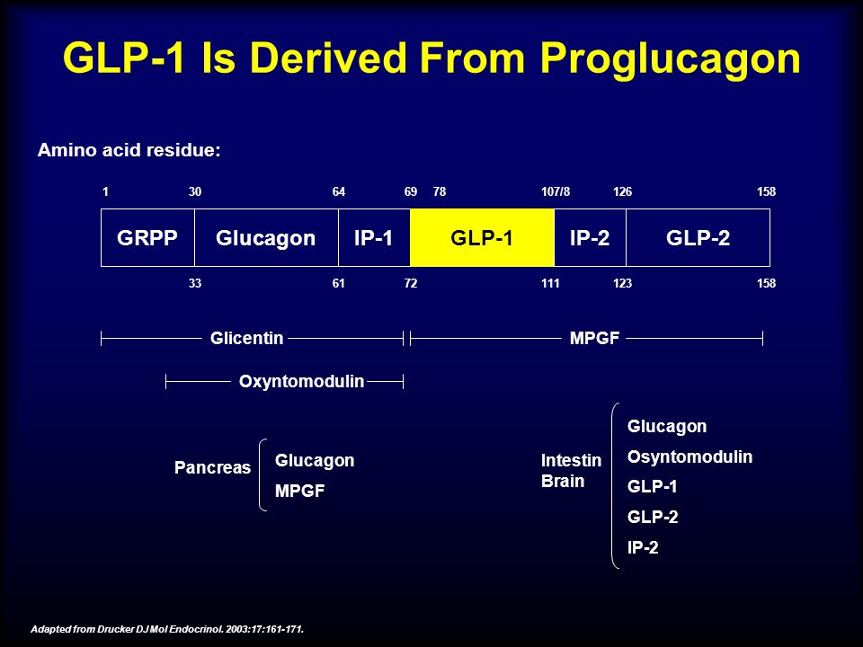 GLP-1 Is Derived From Proglucagon