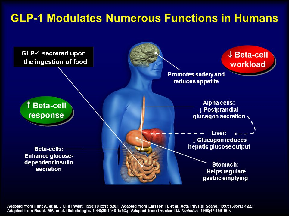 GLP-1 Modulates Numerous Functions in Humans