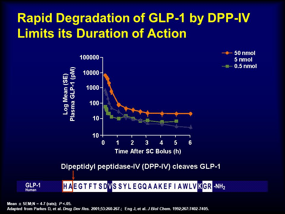 Rapid Degradation of GLP-1 by DPP-IV Limits its Duration of Action