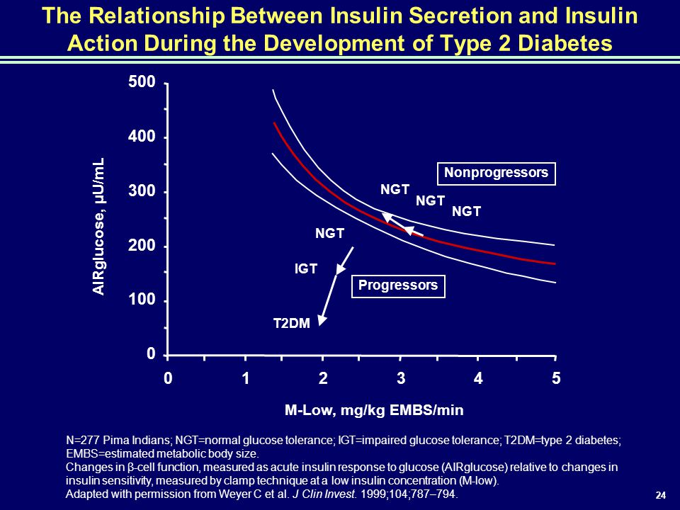 The Relationship Between Insulin Secretion and Insulin Action During the Development of Type 2 Diabetes