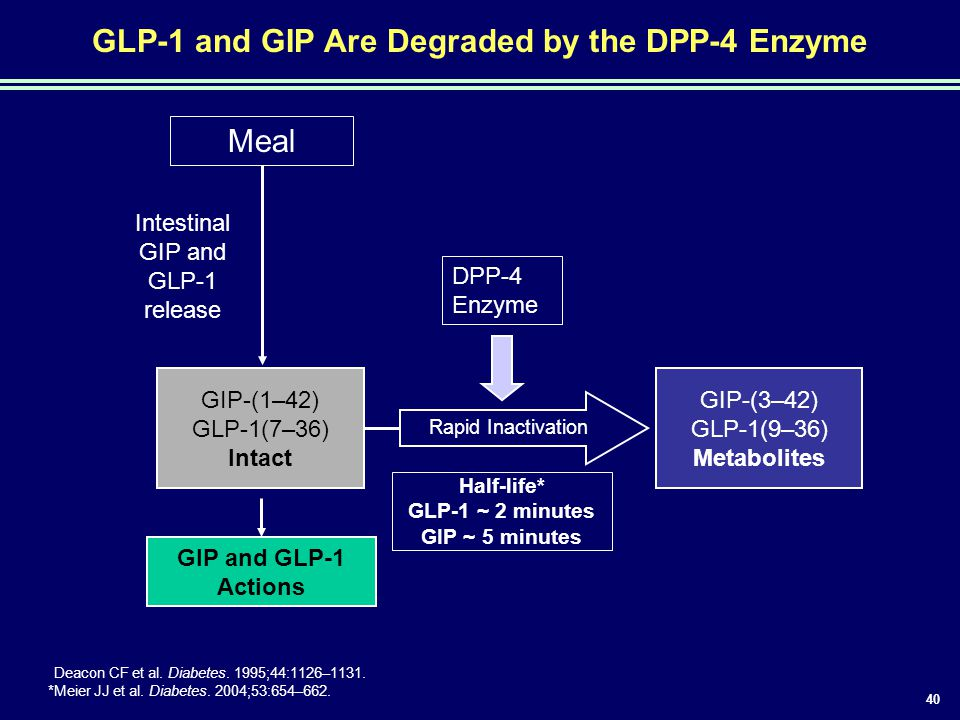 GLP-1 and GIP Are Degraded by the DPP-4 Enzyme