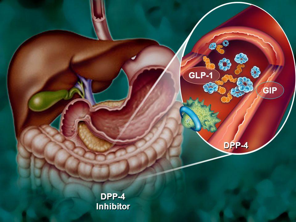 GLP-1 GIP DPP-4 DPP-4 Inhibitor