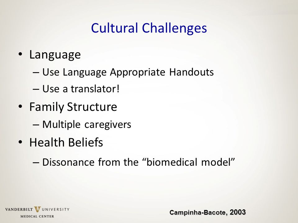 Cultural Challenges Language Family Structure Health Beliefs