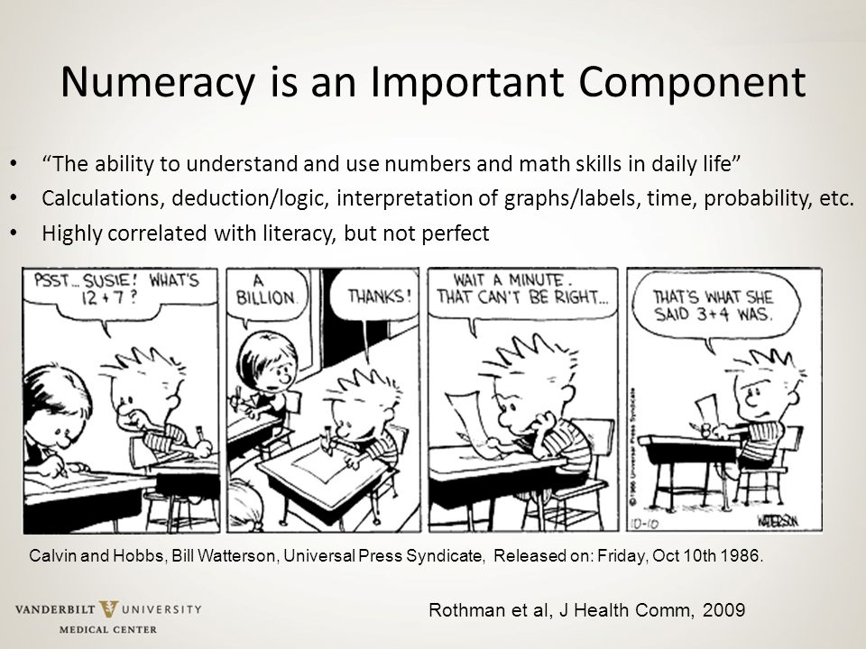 Numeracy is an Important Component