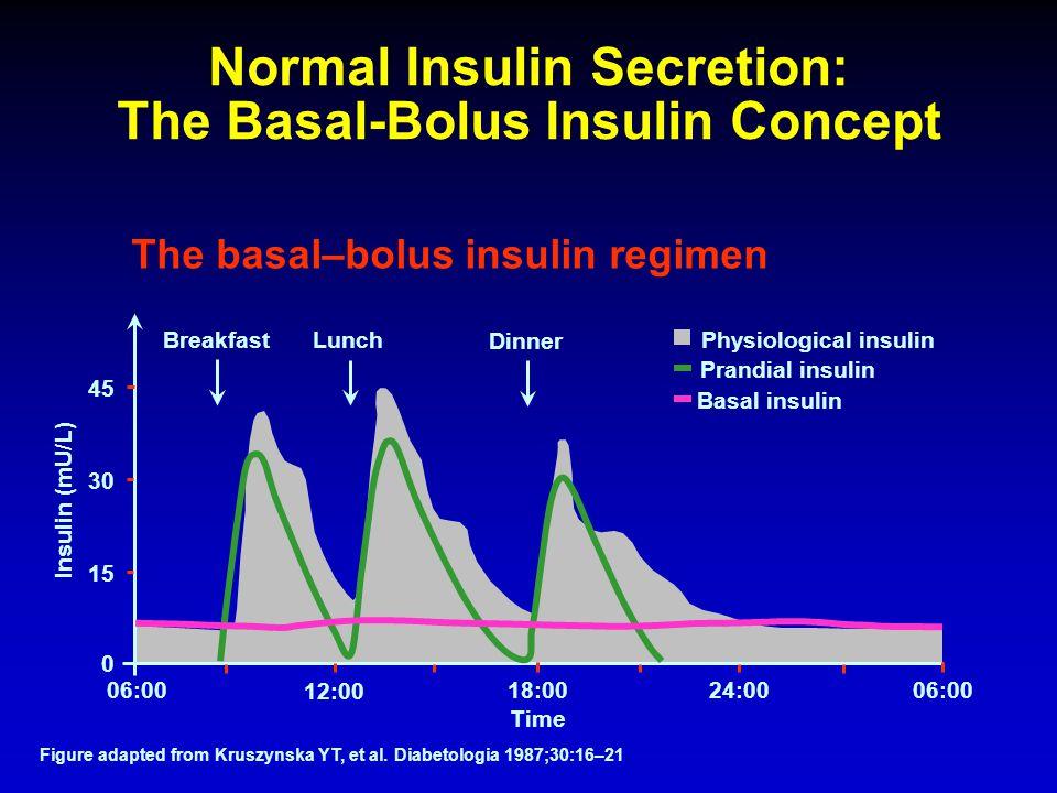 Normal Insulin Secretion: The Basal-Bolus Insulin Concept