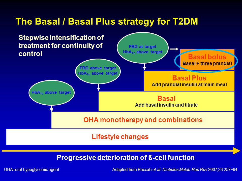 The Basal / Basal Plus strategy for T2DM