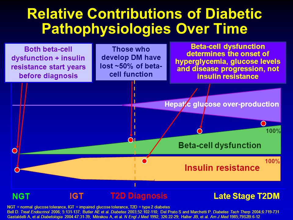 Relative Contributions of Diabetic Pathophysiologies Over Time