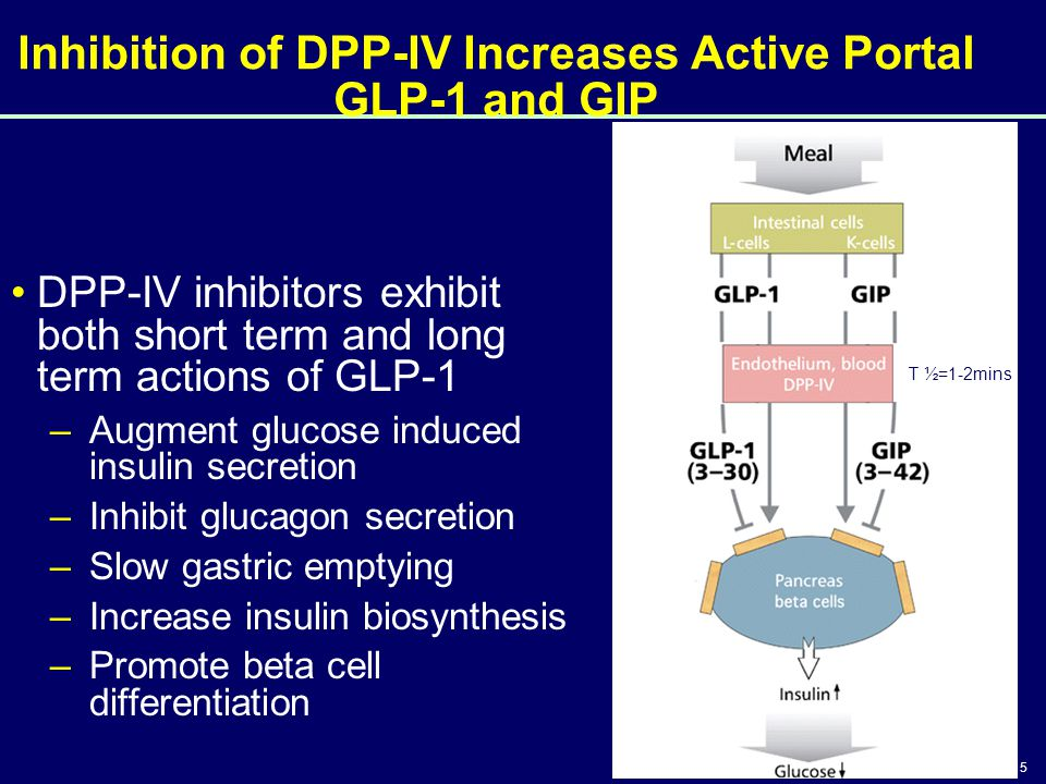 Inhibition of DPP-IV Increases Active Portal GLP-1 and GIP