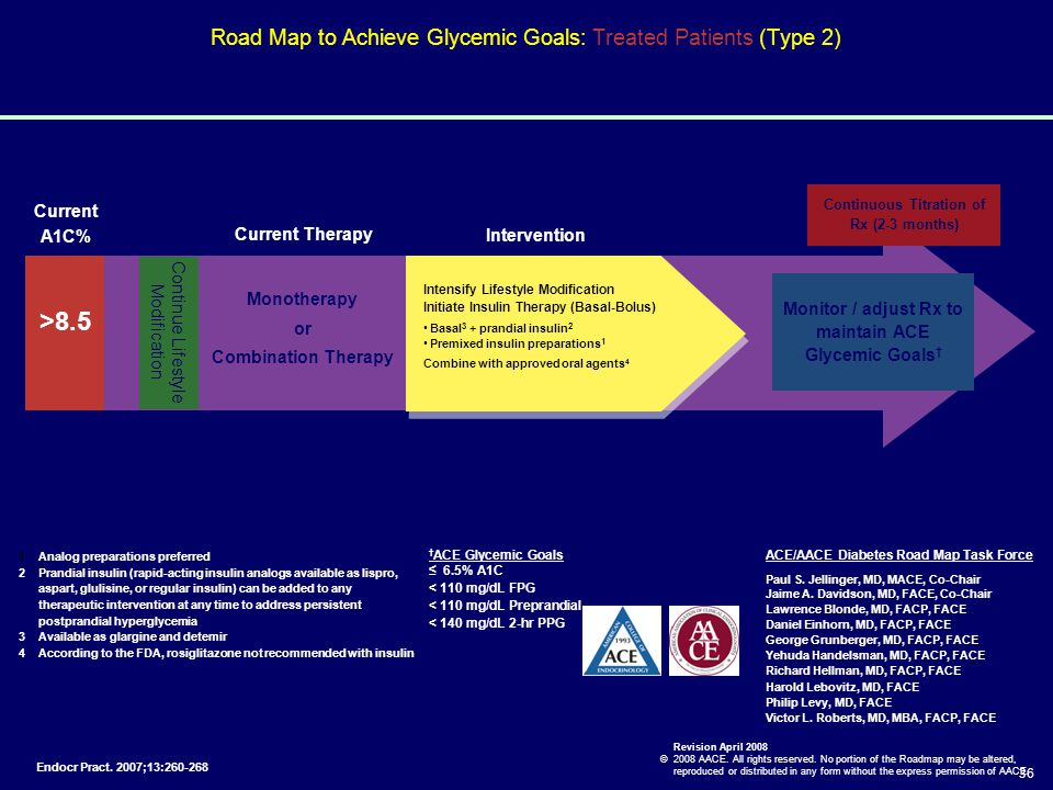 Road Map to Achieve Glycemic Goals: Treated Patients (Type 2)