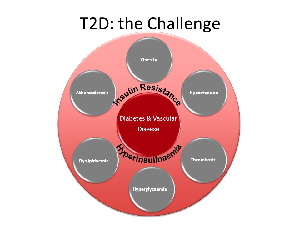 T2D: the Challenge Insulin Resistance Hyperinsulinaemia