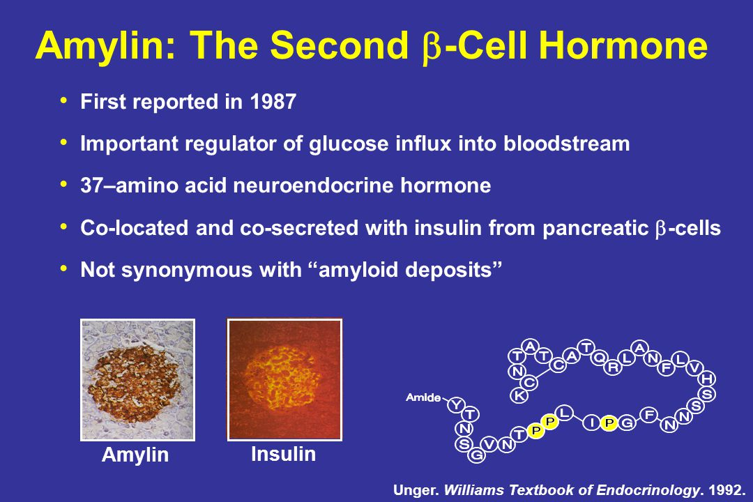 Amylin: The Second -Cell Hormone
