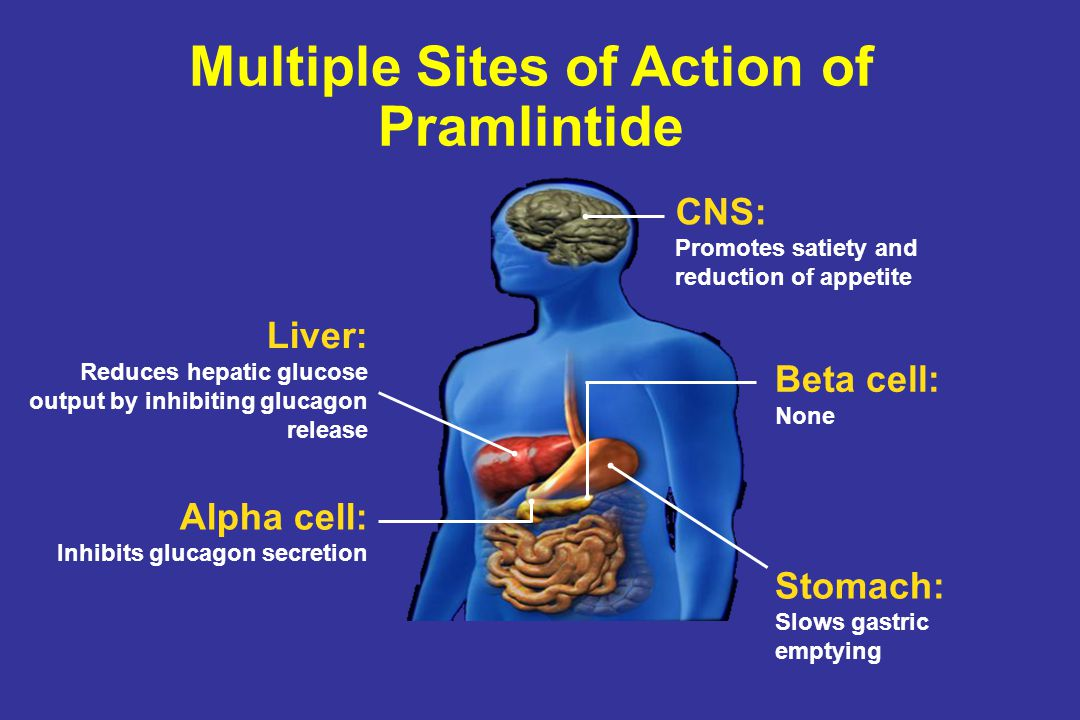 Multiple Sites of Action of Pramlintide