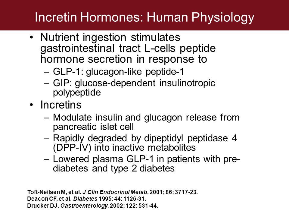Incretin Hormones: Human Physiology