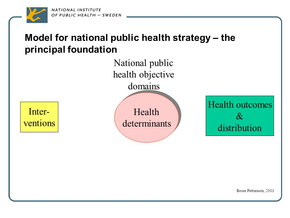 National public health objective domains