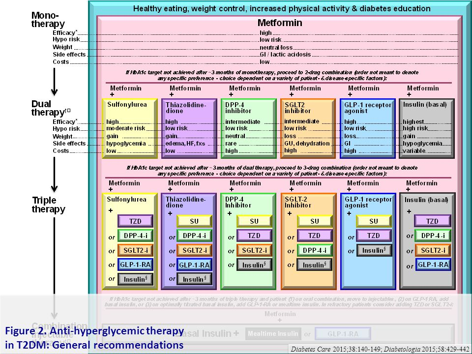 Figure 2. Anti-hyperglycemic therapy in T2DM: General recommendations