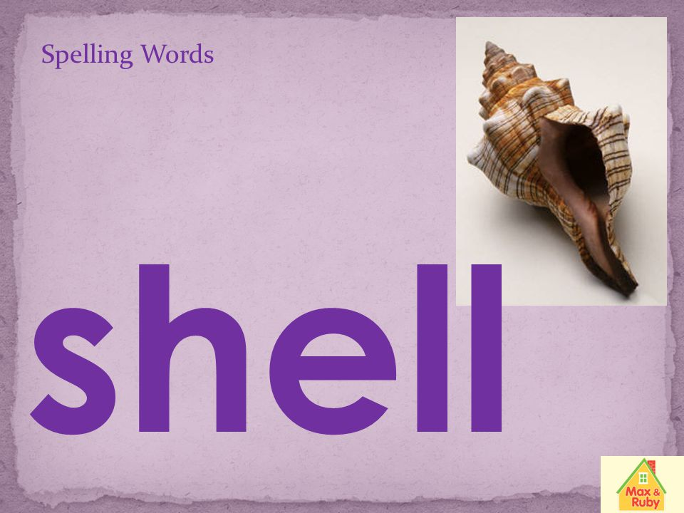 Spelling Words shell