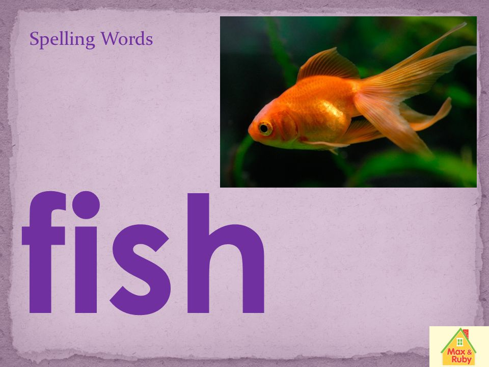 Spelling Words fish