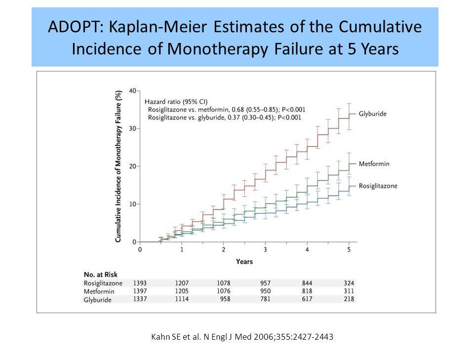 Kahn SE et al. N Engl J Med 2006;355:2427-2443