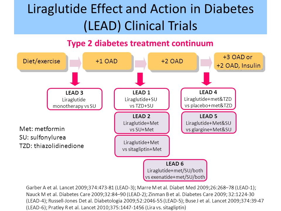 Liraglutide Effect and Action in Diabetes (LEAD) Clinical Trials