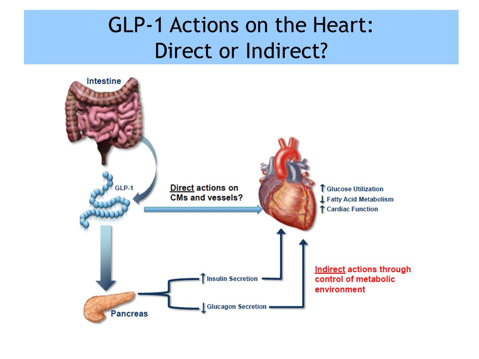 GLP-1 Actions on the Heart: Direct or Indirect