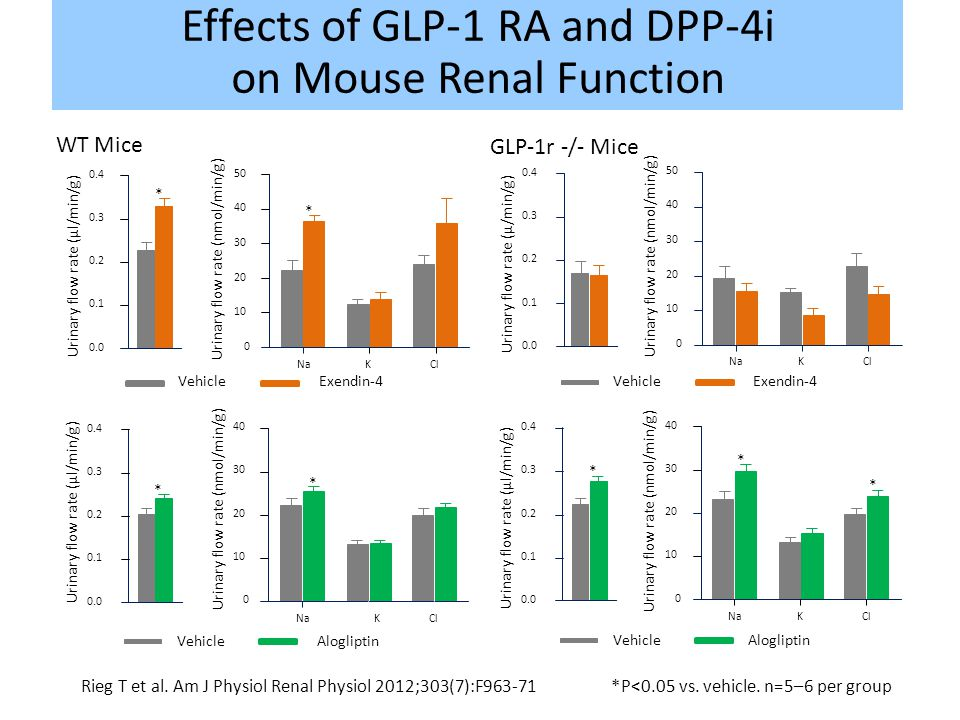 Effects of GLP-1 RA and DPP-4i on Mouse Renal Function